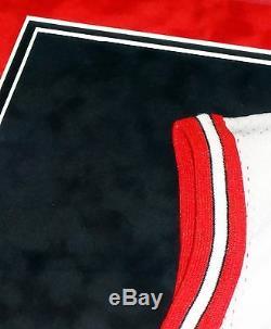 Michael Jordan Chicago Bulls Hand Signed Autographed Custom Framed Jersey! Proof