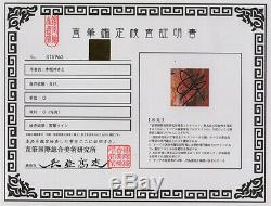 Yukito Kishiro Gunnm Battle Angel Alita hand signed autograph photo with coa
